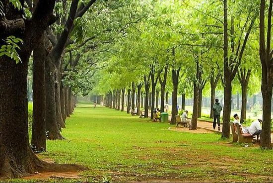 Cubbon Park: AC city of India, Bangalore India (Bengaluru)